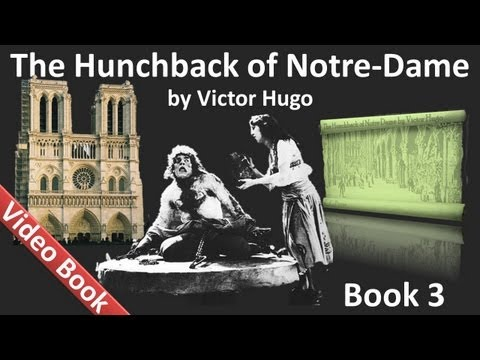 Book 03 - The Hunchback of Notre Dame Audiobook by Victor Hugo (Chs 1-2)